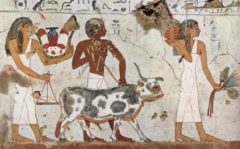 Scene from Tuthmosis III tomb