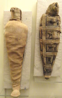 animal mummies - mummified hawks, Ptolemaic Period