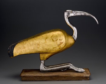 beautiful wooden coffin containing the mummy of an Ibis