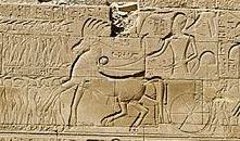 Seti I on his chariot, from Karnak copyright The Egypt Archive