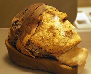 The head of Djehutynakht, 11th Dynasty (copyright Marcus Cyron)