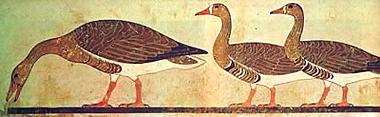 Meidum Geese